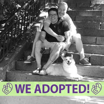 henry-sebastiaan-adoption-profile-fia-cover-we-adopted.jpg