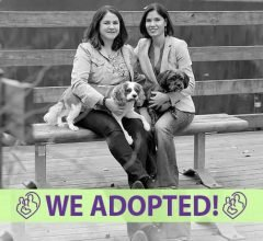 trish-lucy-adoption-profile-fia-cover-we-adopted