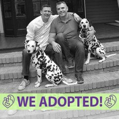 jason-simon-adoption-profile-fia-cover-we-adopted