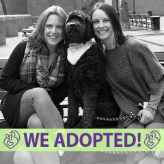 kaydee-michelle-adoption-profile-fia-cover-we-adopted