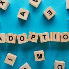 Friends in Adoption -Compassionate adoption since 1982 Call 1-800-982-3678 anytime or text us at 1-518-350-4581 M–F 8am–4pm EST